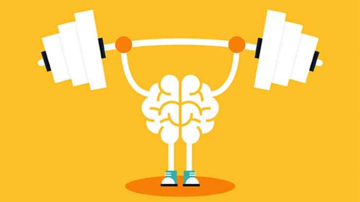 How exercise builds your brain   Arana Hills Physiotherapy