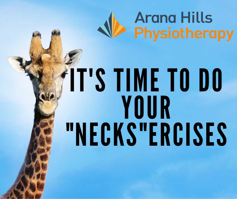 neck exercises | Arana Hills Physiotherapy