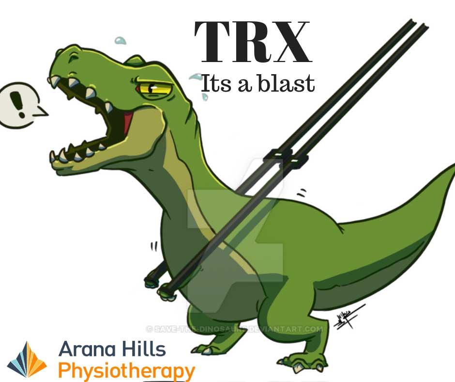 We love TRx   Arana Hills Physiotherapy